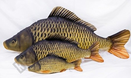 Cushion cuddly CARP plush toy