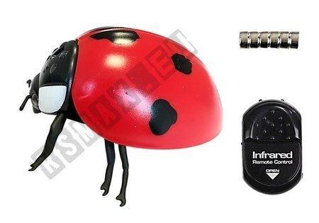 Radio Controlled Ladybug R/C Insect