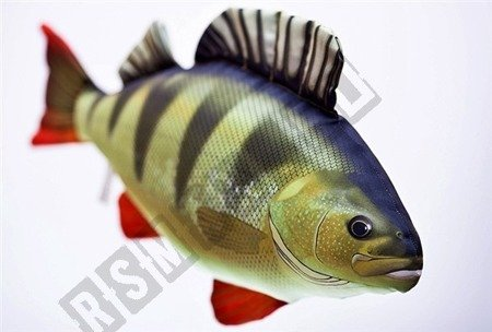 GABY Kissen Kuscheltier Fisch BARSCH Plüschtier Plüschfisch Geschenk